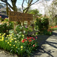 Kopernik Lodge front entrance sign with tulips and daffodils